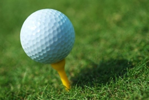 7th Annual Parents for Programs Library Golf Fundraiser May 21st, 2016